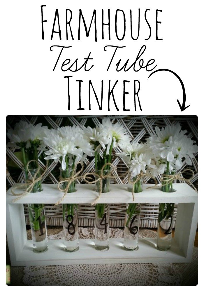 Make your own DIY Farmhouse Test Tube Vase |www.raggedy-bits.com