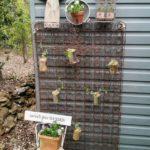 Rusty Spring Sweet Pea Garden