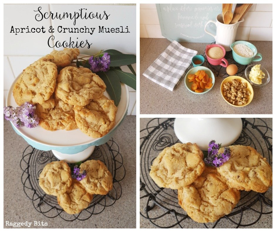 I dare you to try these Scrumptious Apricot and Crunchy Muesli Cookies! | Printable Recipe | www.raggedy-bits.com