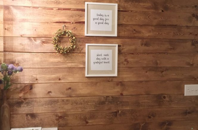 How to add a Shiplap Wall to any room which is a feature from Waste Not Wednesday-46 by Life on Pearl Street | www.raggedy-bits.com