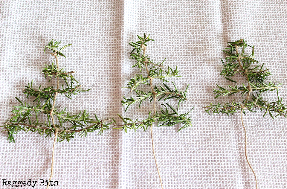 Add a little touch of greenery to your Christmas decorating with a Fresh Rosemary Christmas Tree Garland | www.raggedy-bits.com #christmas #garland #rosemary #christmastree #farmhouse