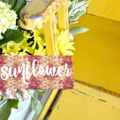 Sweet Pickins Milk Paint - Sunflower | www.raggedy-bits.com | #raggedybits #paintsupplier #milkpaint #paintedfurniture #sunflower