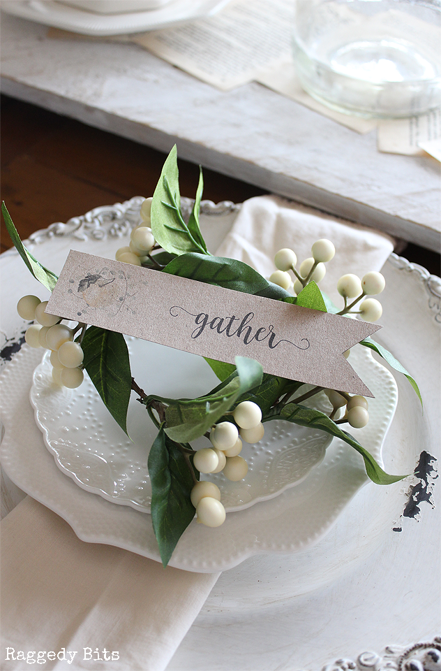 A fun way to add some Farmhouse charm to your tablescape. Perfect for fall or anytime of the year | www.raggedy-bits.com | #raggedybits #placecards #tablescape #apples #decorate #farmhouse