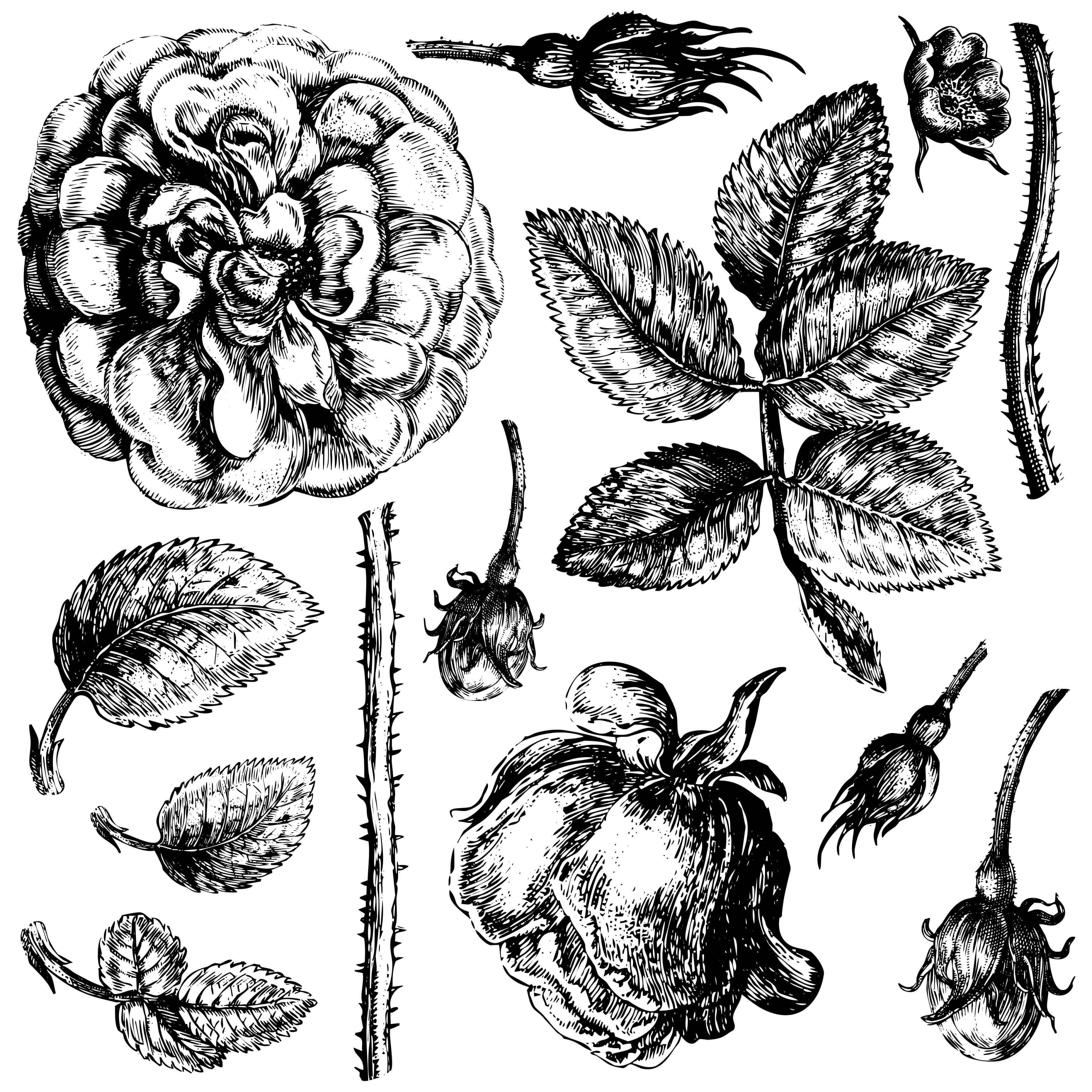Have fun adding texture to your projects with these fun Iron Orchid Designs - Lady Of Shallot | www.raggedy-bits.com | #raggedybits #IOD #DecorStamps #Lady Of Shallot #texture