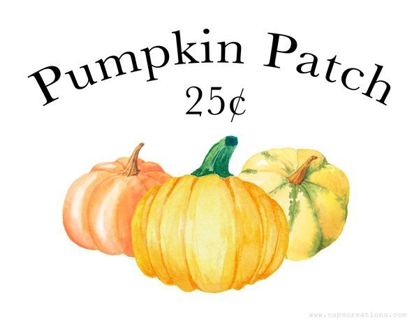 Free Pumpkin Patch Fall Printable which is a feature for Waste Not Wednesday-175 by Cap Creations | www.raggedy-bits.com