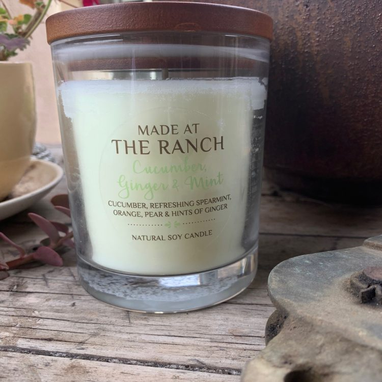Get your senses going with this delicious Cucumber & Mint | www.raggedy-bits.com | #raggedybits #soycandles #homedecor #vintage #farmhouse