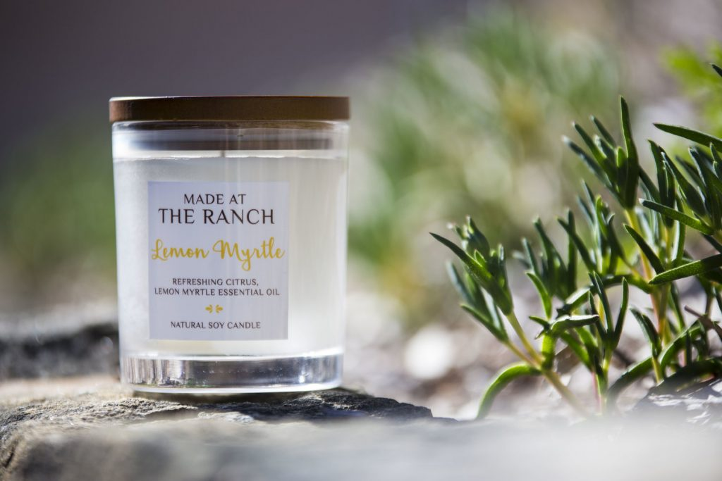 Get your senses going with this delicious Lemon Myrtle Candle   www.raggedy-bits.com   #raggedybits #soycandles #homedecor #vintage #farmhouse