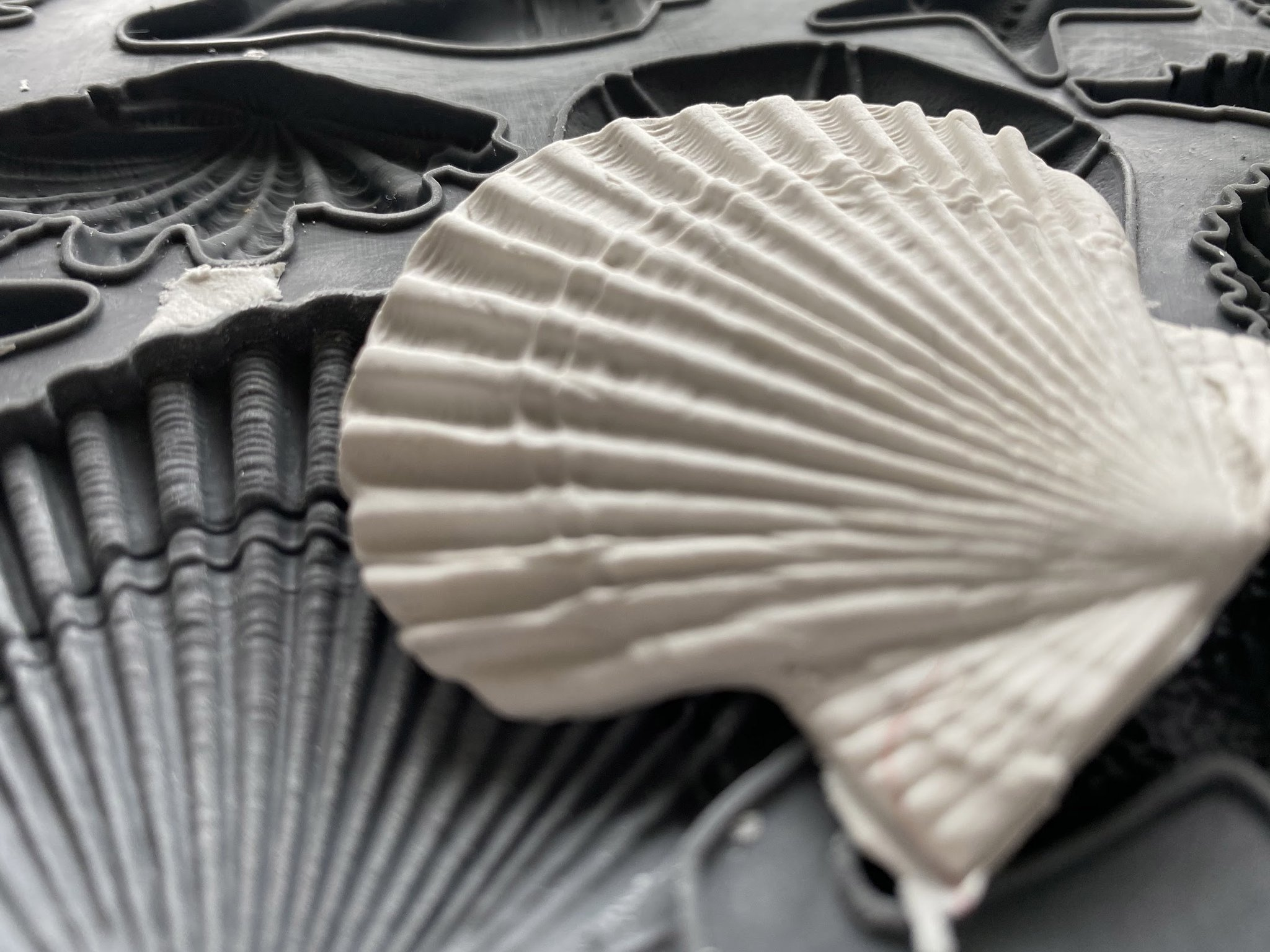 Have fun adding texture to your projects with these Iron Orchid Designs Decor Moulds - Seashore   www.raggedy-bits.com   #raggedybits #IOD #SeaShore #texture #DIY #Moulds