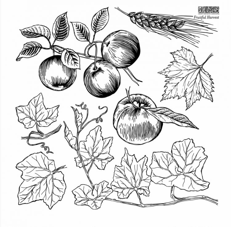 IOD Decor Stamp - Fruitful Harvest   www.raggedy-bits.com